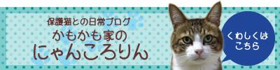 保護猫との日常ブログ かもかも家のにゃんころりん
